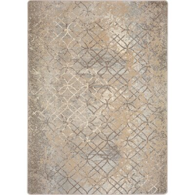 One-of-a-Kind Longwood Attract Hand Woven Brown Area Rug Rug Size: Rectangle 78 x 109