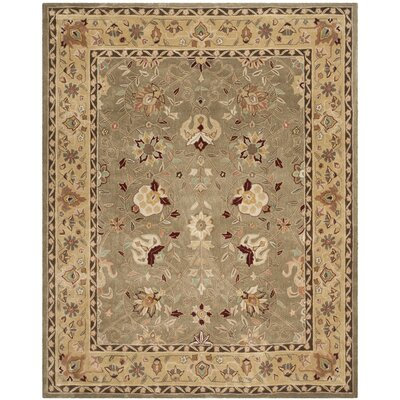 Angus Hand-Hooked Sage/Beige Area Rug Rug Size: Rectangle 9 x 12