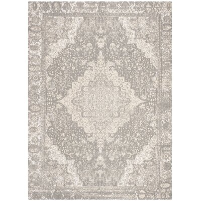 Chenault Silver Area Rug Rug Size: Rectangle 8 x 10