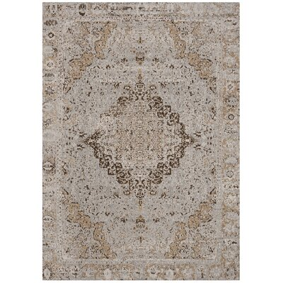 Chenault Taupe Area Rug Rug Size: Rectangle 4 x 6