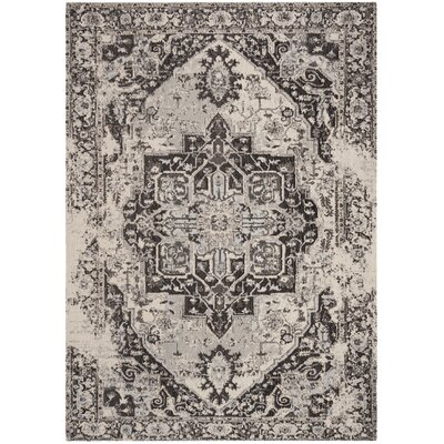 Chenault Anthracite Area Rug Rug Size: Rectangle 4' x 6'
