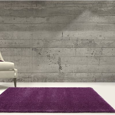 Chantry Purple Area Rug Rug Size: Rectangle 53 x 75
