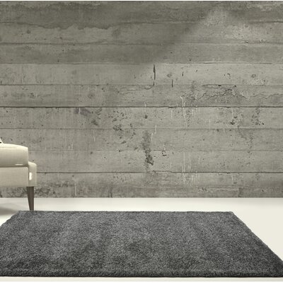 Chantry Gray Area Rug Rug Size: Rectangle 311 x 55
