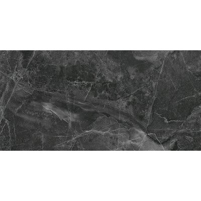 Colmar 12 x 24 Porcelain Field Tile in Dark Gray