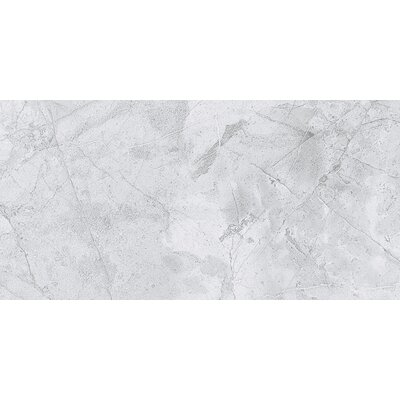 Colmar 12 x 24 Porcelain Field Tile in Silver