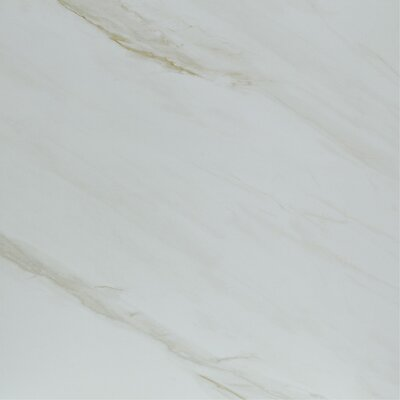 Radiant 20 x 20 Porcelain Field Tile in Gray