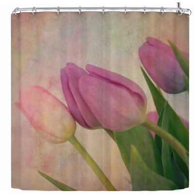 Robin Dickinson Springtime Tulips Shower Curtain