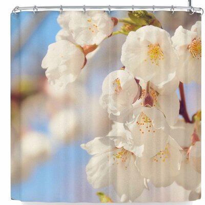 AFE Images Cherry Blossoms Shower Curtain