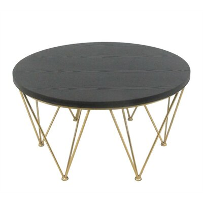 Dimont Contemporary Metal & Wood Coffee Table