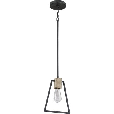 Dillman 1-Light Mini Pendant