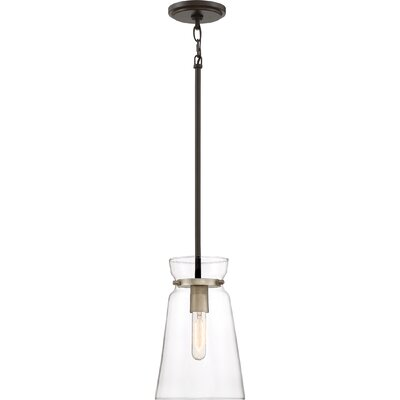 Vidaurri 1-Light Mini Pendant