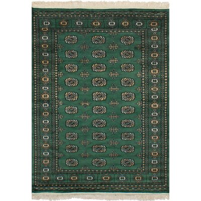 One-of-a-Kind Etting Hand-Knotted Wool Green Area Rug