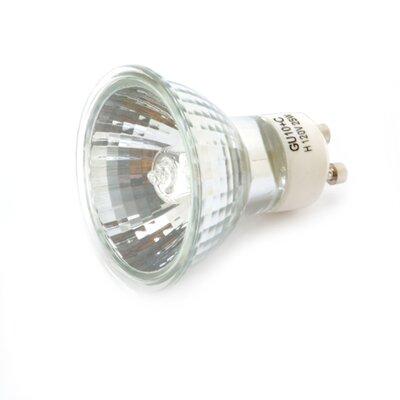 25 W Halogen Light Bulb
