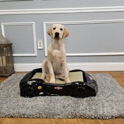 Dog Car Bed Color: Black