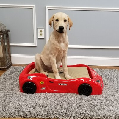 Dog Car Bed Color: Red