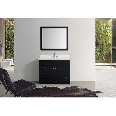 Truesdale 43 Single Bathroom Vanity With Mirror Base Finish: Black
