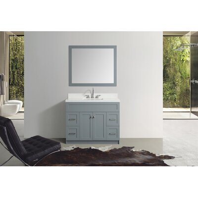 Truesdale 43 Single Bathroom Vanity With Mirror Base Finish: Gray