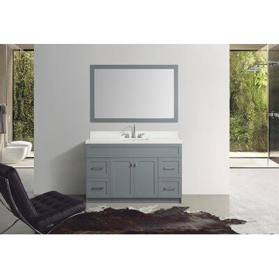 Truesdale 55 Single Bathroom Vanity With Mirror Base Finish: Gray