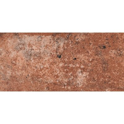 Capella Brick 5 x 10 Porcelain Field Tile in Red