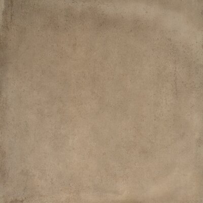Capella Silt 24 x 24 Porcelain Field Tile in Brown