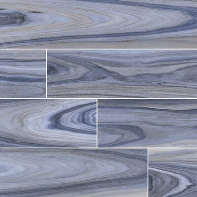 Dellano Exotic Polished 8 x 48 Porcelain Wood Look Tile in Blue