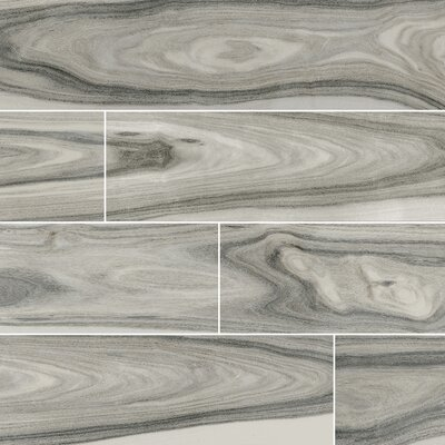 Dellano Moss Polished 8 x 48 Porcelain Wood Look Tile in Gray