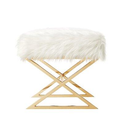 Evonne Ottoman Upholstery: White/Gold