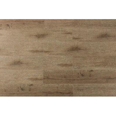 Jeramiah 7 x 48 x 12mm Oak Laminate Flooring in Champagne