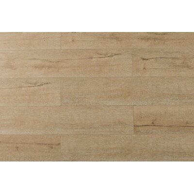 Jeramiah 7 x 48 x 12mm Oak Laminate Flooring in Century