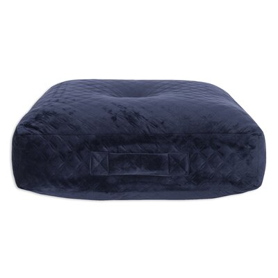Galaz Velvet Floor Pillow Color: Blue