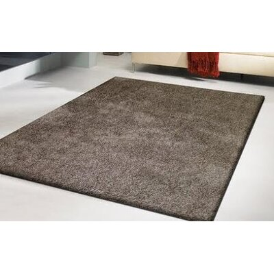 Heineman Solid Shag Hand-Tufted Brown Area Rug Rug Size: Rectangle 5 x 7