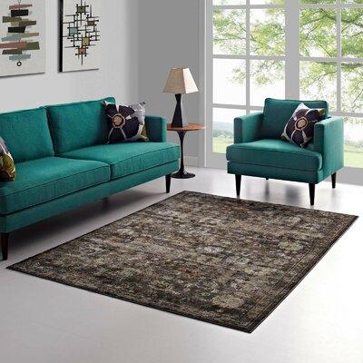 Heitzman Black/Gray Area Rug Rug Size: Rectangle 53 x 76