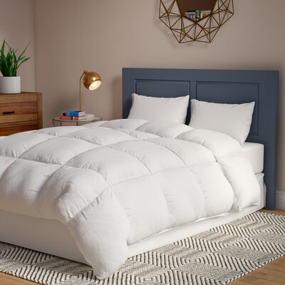 Overfilled Oversized All Season Down Alternative Comforter Size: Queen