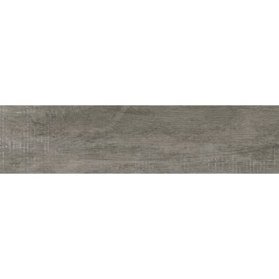 Helena Ash 6 x 40 Porcealian Wood Look Tile in Gray