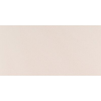 Optima 12 x 24 Porcelain Subway Tile in Beige