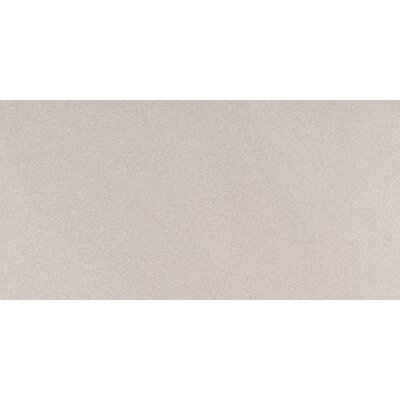 Optima 12 x 24 Porcelain Subway Tile in Gray
