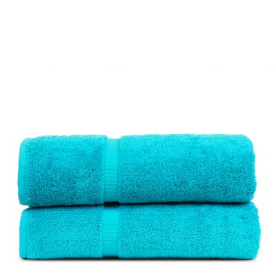 Wellston Turkish Cotton Dobby Border Bath Towel Color: Aqua Blue