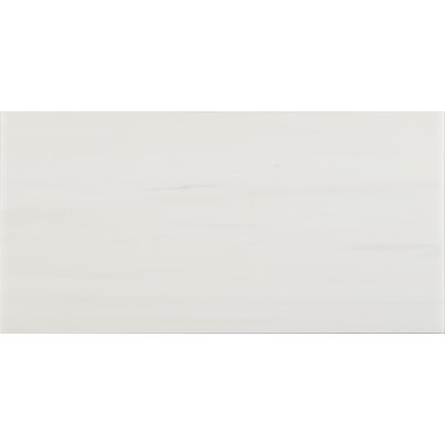 Bianco Dolomite 12 x 24 Marble Subway Tile in White