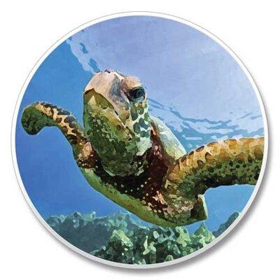 Sea Turtle Auto Coaster 07696E697A1D4446B28A7F1C5B3C6DB4