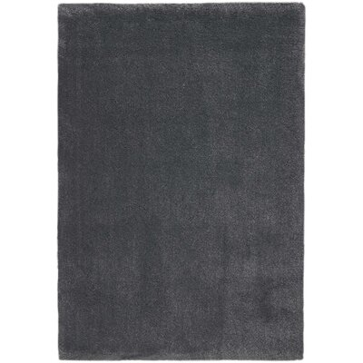 Brooklyn Charcoal Area Rug Rug Size: Rectangle 53 x 75