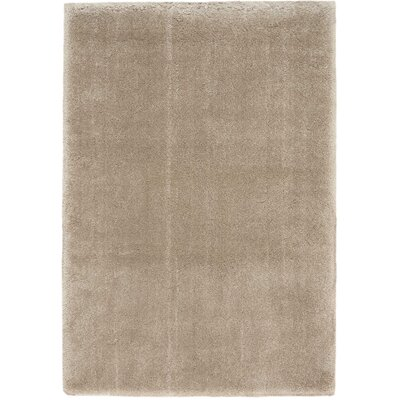 Brooklyn Brown Area Rug Rug Size: Rectangle 53 x 75