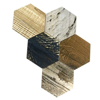 Garde Hex 8.5 x 9.75 Porcelain Wood Look Tile in Catan Shadow