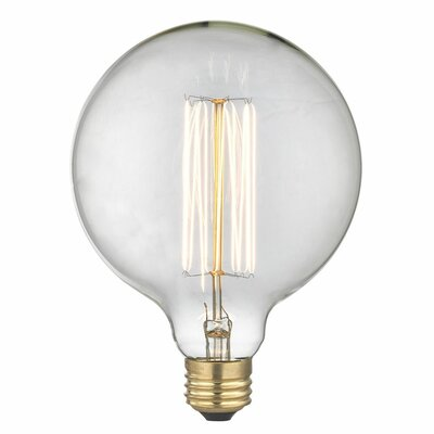 Eureka 40W E26/Medium Incandescent Vintage Filament Light Bulb
