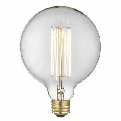 Eureka 40W E26/Medium Incandescent Vintage Filament Light Bulb
