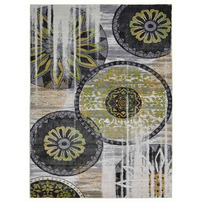 Hassen Black/Green Area Rug Rug Size: Rectangle 9 x 12