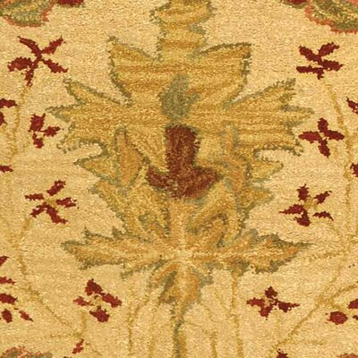 Anatolia Cream/Red Area Rug Rug Size: Rectangle 3 x 5