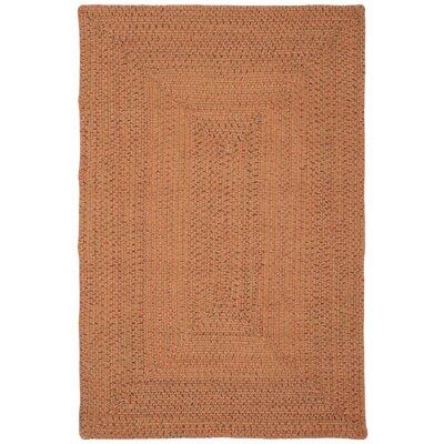 North Hand Woven Beige/Orange Area Rug Rug Size: Rectangle 4 x 6