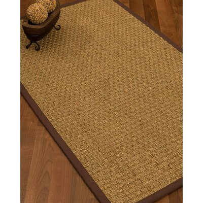 Antiqua Border Hand-Woven Beige/Brown Area Rug Rug Size: Rectangle 2 x 3, Rug Pad Included: No