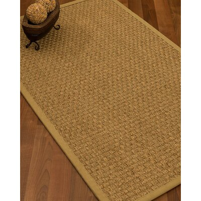 Antiqua Border Hand-Woven Beige/Sage Area Rug Rug Size: Rectangle 9 x 12, Rug Pad Included: Yes