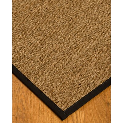 Chavarria Border Hand-Woven Beige/Black Area Rug Rug Size: Rectangle 5 x 8, Rug Pad Included: Yes